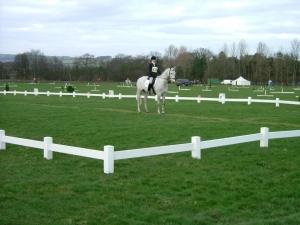 Dressage Arena Horse Jumps